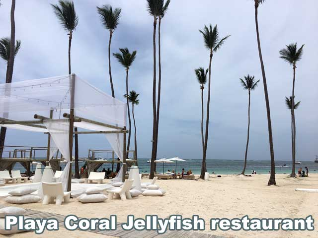 Punta Cana Real Estate > ASTRA Realty Dominican Republic